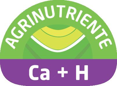Ca + H (Calcio)