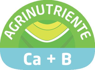 Previene y corrige deficiencias de calcio y boro. Promueve la fecundación y formación del fruto.