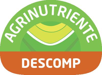 Descomp