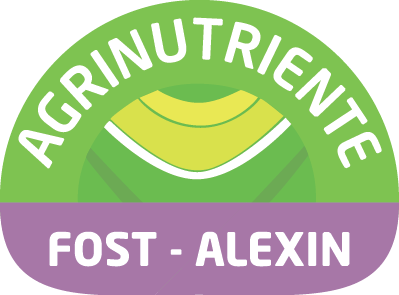 Fost – Alexin